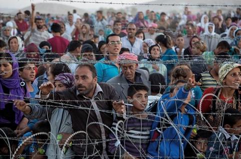 シリア難民受け入れへ.PNG