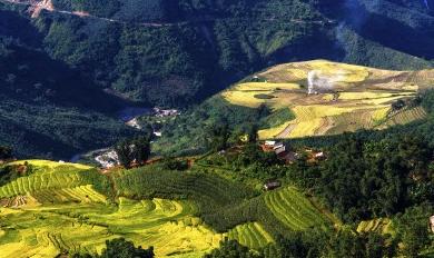 ミャンマー.PNG