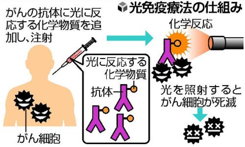光免疫療法の仕組み.PNG