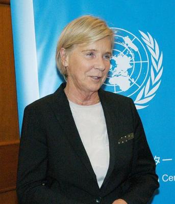 国連のブーアブキッキオ特別報告者.PNG