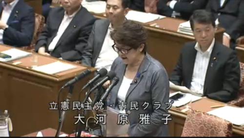 大河原雅子・TPP11.PNG