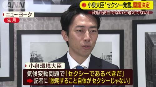 小泉進次郎・セクシー閣議決定.PNG