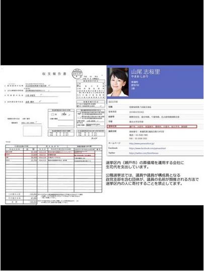 山尾しおり刑事告発2.PNG