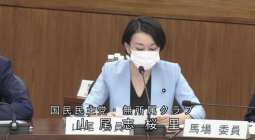 山尾志桜里・国民投票法改正案・原案に賛成・修正案に賛成.PNG