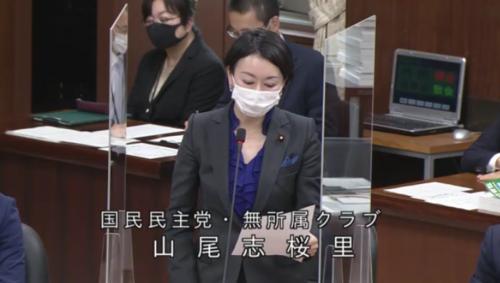 山尾志桜里・RCEP承認案・賛成討論.PNG