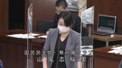 山尾志桜里・RCEP承認案・質疑・衆院外務委員会・4月9日.PNG