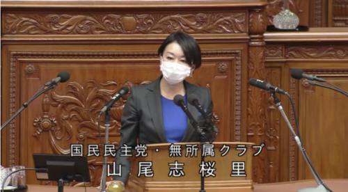 山尾志桜里・RCEP承認案・質疑・衆院本会議.PNG