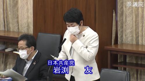 岩渕友(日本共産党)・デジタル修正案・趣旨説明.PNG
