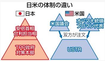 日米の体制の違い.PNG
