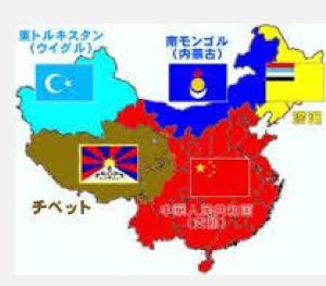 本当の中国はこんなに小さい.PNG