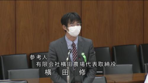 横田修一(参考人)・種苗法改正案・11月12日.PNG