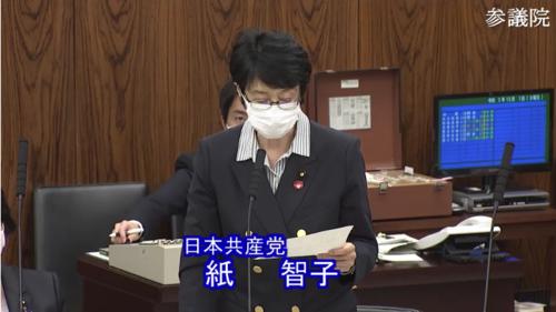 紙智子・種苗法改正案・反対討論.PNG