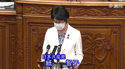 紙智子・RCEP承認案・質疑・参院本会議.PNG