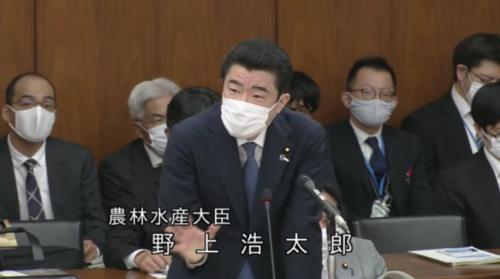 野上浩太郎・吉川元大臣に関する答弁.PNG