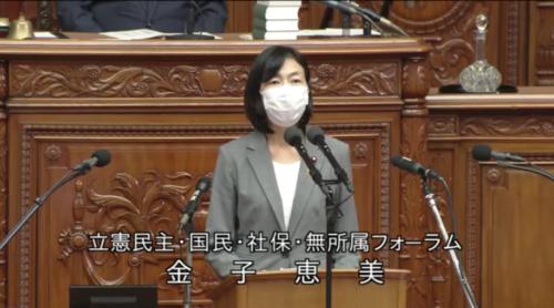 金子恵美・復興庁設置法改正案・衆院本会議.PNG