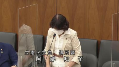 阿部知子・土地規制法案・質疑・5月26日.PNG